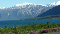 Kluane Lake Near Sheep Mountain - Kluane National Park