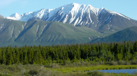 Kluane National Park